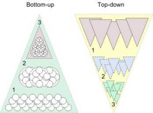 bottom-up-Tp-Down